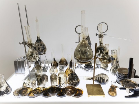 Laboratorio, 2011-2013 / Gelatin, silver prints on glass, nickel-plated metal devices and LED light panel / Variable dimensions